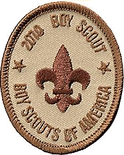 Ranks in the Boy Scouts of America